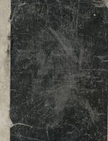 Wiebke Kapitzky, untitled, 2013, carbon paper on cardboard, 31x23,5 cm