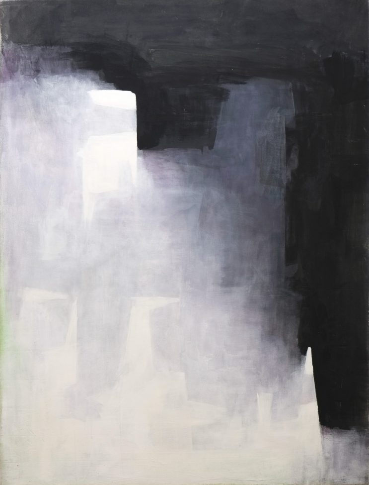 Walter Vopava, untitled, 2013, acrylic on canvas, 260x200 cm